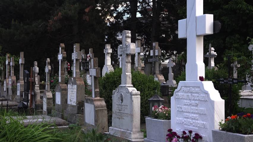 Почему на кладбище кружится голова
