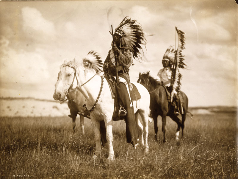 native family versus dominant culture american horse louis